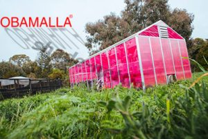 shadehouse with pink shade net
