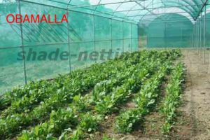shade net providing protection to crops in cropfield
