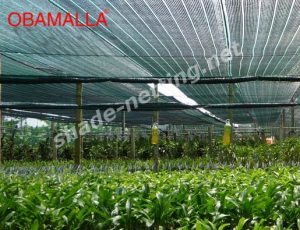 crops in cropfield protected with shade netting